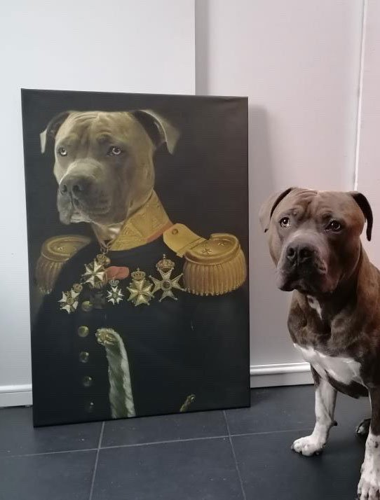 de luitenant generaal 3