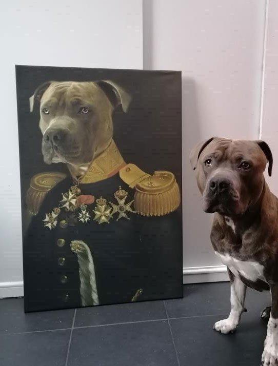 de luitenant generaal 4