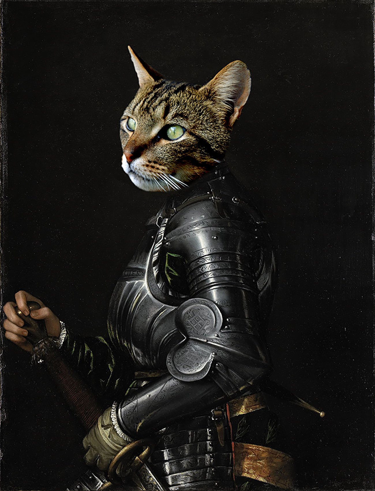 portret huisdier donkere ridder